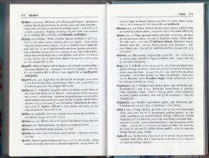 Slangisanakirja.